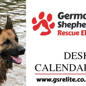 GSRE Cards & Calendars